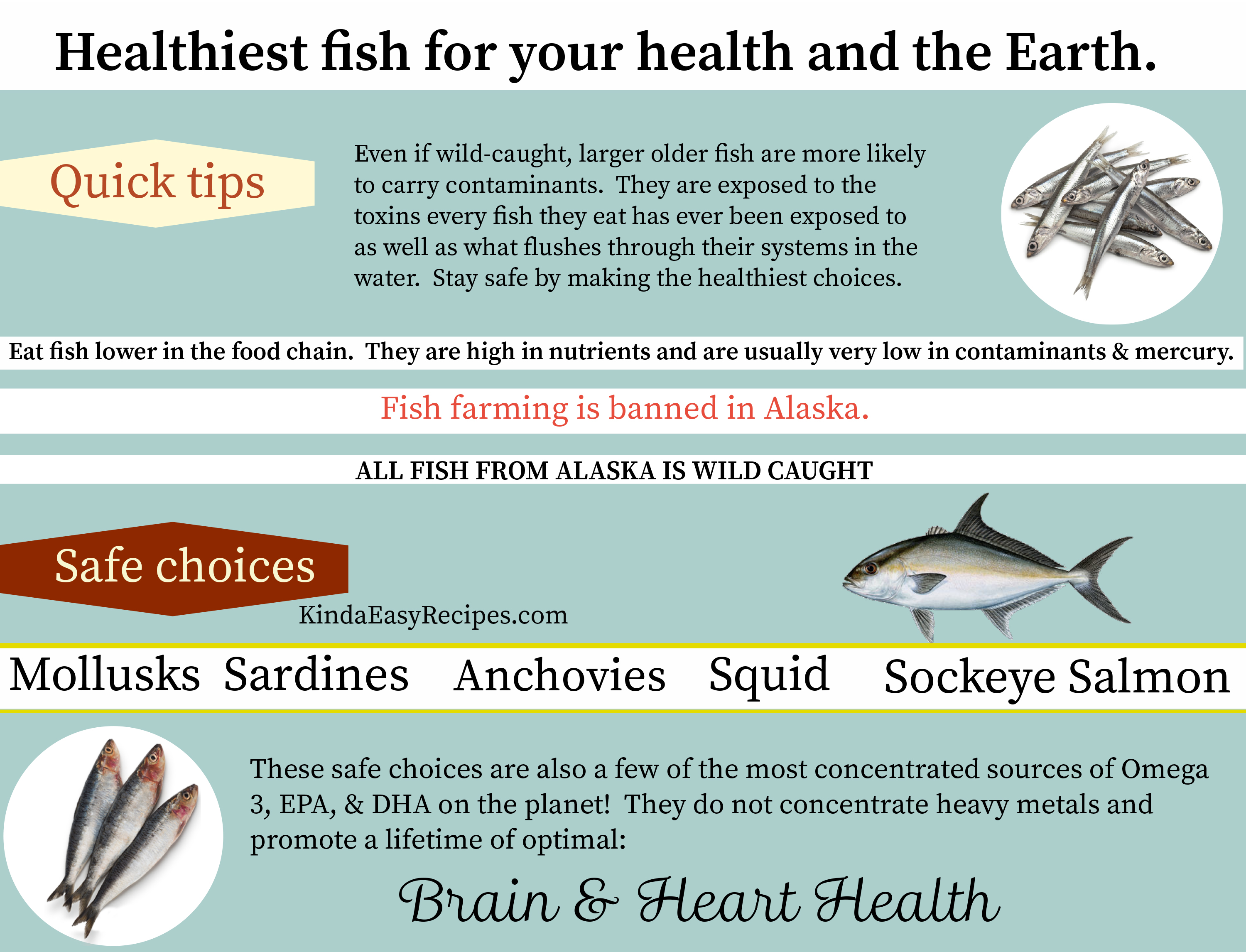 Farm Raised Vs Wild Caught Fish And Other Seafood