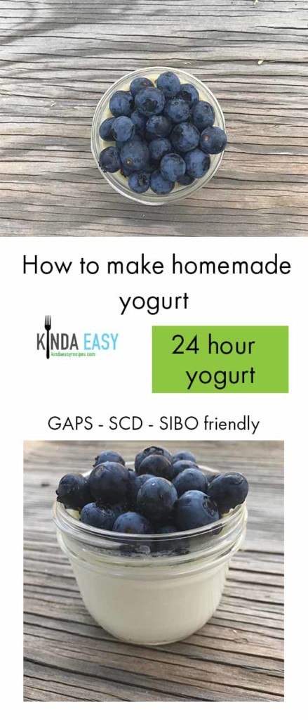 how-to-make-yogurt-at-home