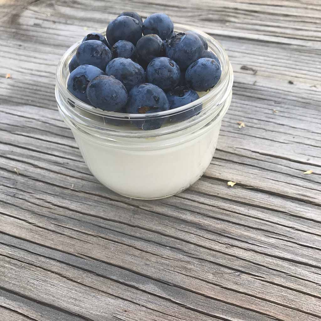 how-to-make-yogurt