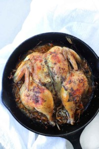 roasted-spatchcock-chicken-kindaeasy